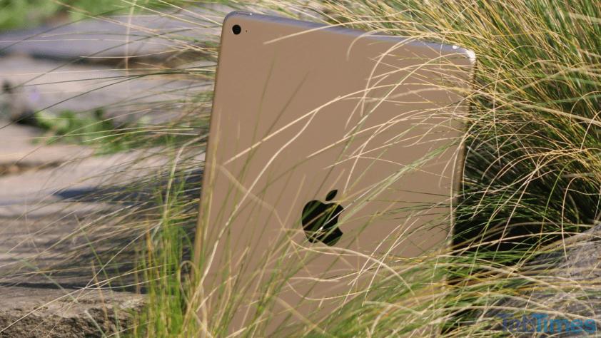 iPad-Air-2-back-grass-rock 9