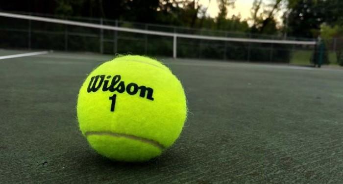 Теннисный мяч на камеру Elephone P8000