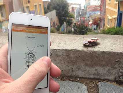 Биохакинг или как управлять живым существом со смартфона